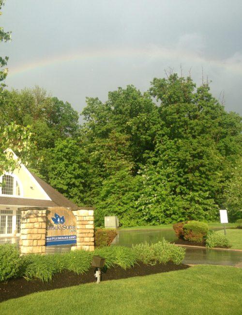 rainbow soria